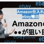 【Amazon仕入れebay輸出】Amazonの●●が狙い目